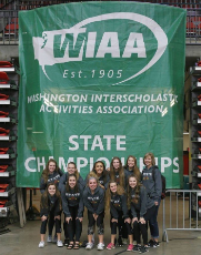 Volleyball Takes a Spike at State